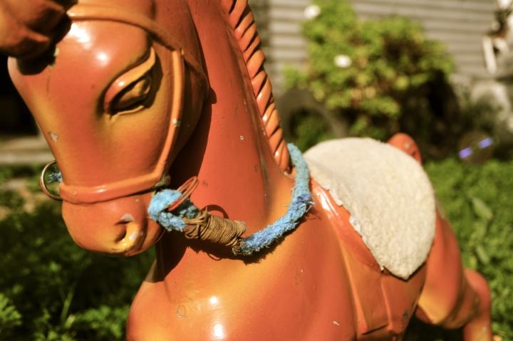 horse upload